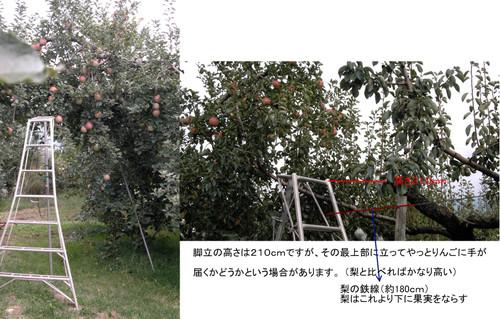 Gsc_0053r_5