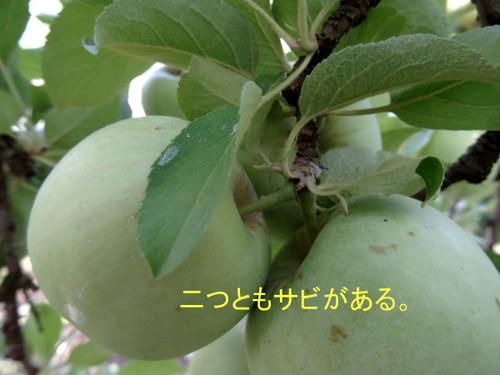 Dsc00190_2