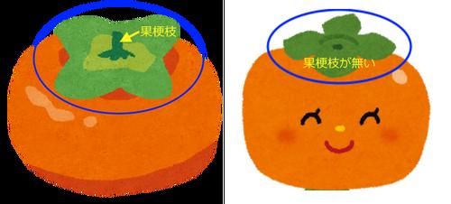 Fruit_kaki_2