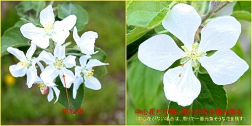 Photo_20210520215501